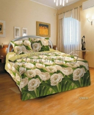 Комплект постельного белья 72401